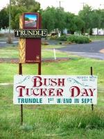 trundle sign 2010.jpg